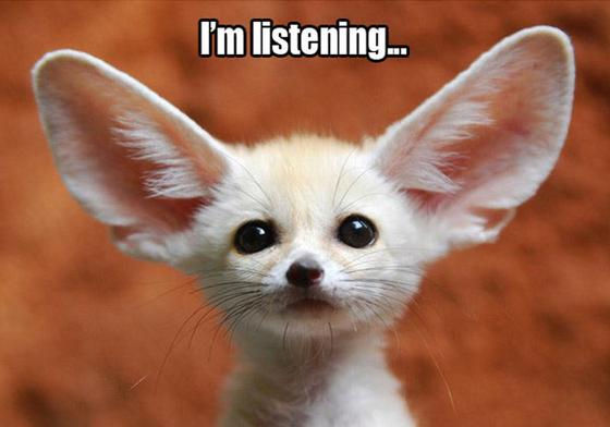 naslouchání